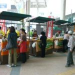 市内産農産物の旬のキャンペーン
