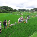 鹿児島の食農育と地域連携を考える会の自然体験