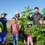 少年自然の家の農業体験