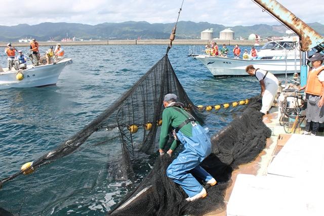漁業体験イベントの様子1